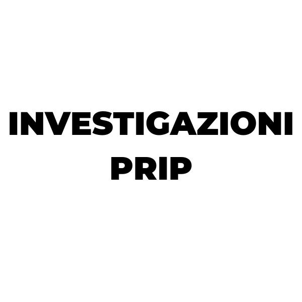 Dl Investigazioni